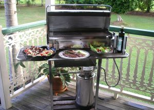 Stainless Steel Cookout BBQ and Table