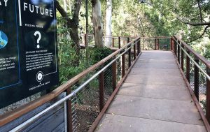 Currumbin Wildlife Sanctuary-Lost Valley-Image 2