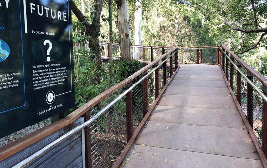 Currumbin Wildlife Sanctuary-Lost Valley-Image 2