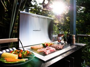 Southern Stainless Infinity Gas BBQ