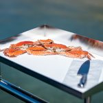 Sheet Bait board makes cleaning your fish easy