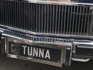Stainless Steel Number Plate Surround