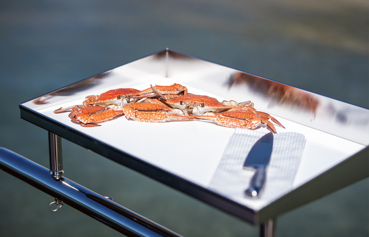 Quality stainless bait board